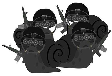 snailteam6